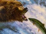 Grizzly: altijd raak met creatieve communicatie